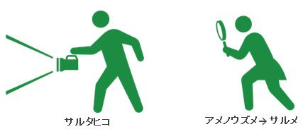 sarutahiko_sarume_20151023